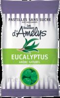 Les Douceurs d'Amelys Pastilles Eucalyptus sans sucre Sachet/80g à Agen