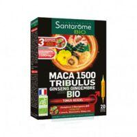 Santarome Bio Maca 1500 Tribulus Ginseng Gingembre Solution buvable 20 Ampoules/10ml à Agen